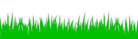 Green grass on white backdrop design