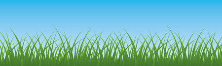 Green grass with sky backdrop design