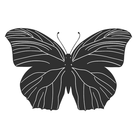 Butterfly stencil by hand drawing - vector
