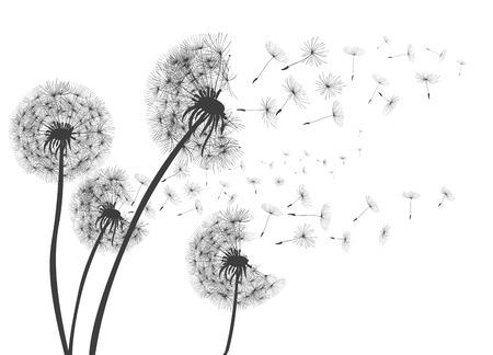 Abstracte paardebloemen paardebloem met vliegende zaden - voor voorraad