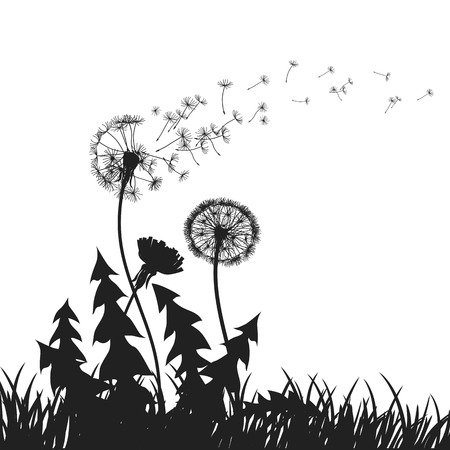 Abstract Dandelions dandelion with flying seeds – for stock vector Stock Vector - 100847479