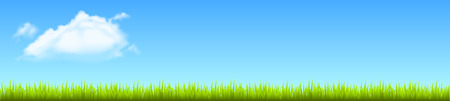 Field, green grass with white cloud - stock vector