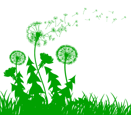 Abstract green dandelion with flying seeds – stock vector Illustration