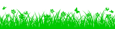 Green grass on white background with flowers - vector Иллюстрация