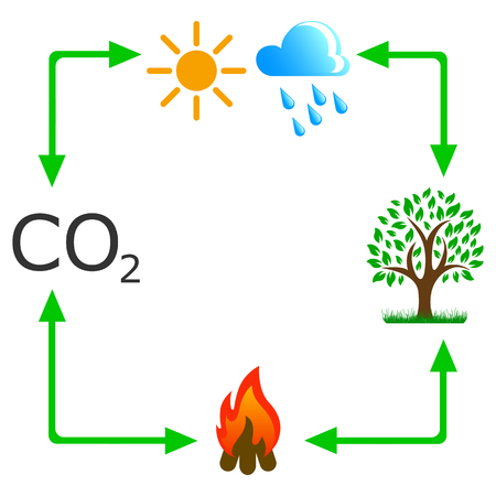 Circulation co2 in nature