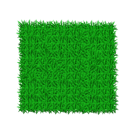 Green grass mat on white background - stock vector