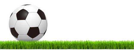 Soccer ball on grass– stock vector Banco de Imagens - 102550144