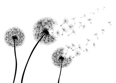 Abstract Dandelions dandelion with flying seeds – stock vector Stock Vector - 102796554