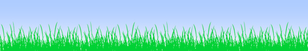 Green grass and sky - vector