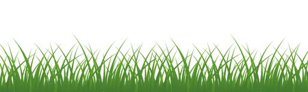 Field, green grass on white background - vector for stock