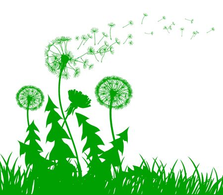 Abstract green dandelion with flying seeds – stock vector Ilustração