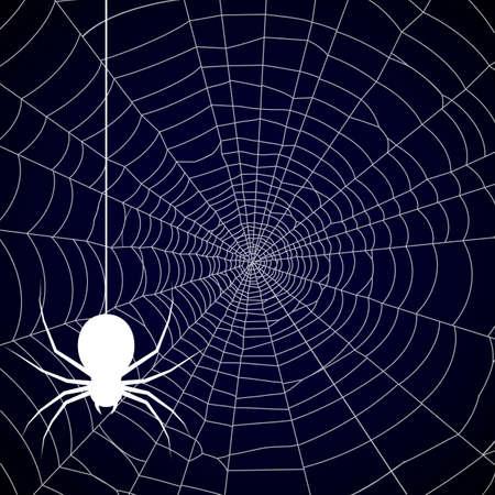 Halloween, spider web background - vector Vettoriali