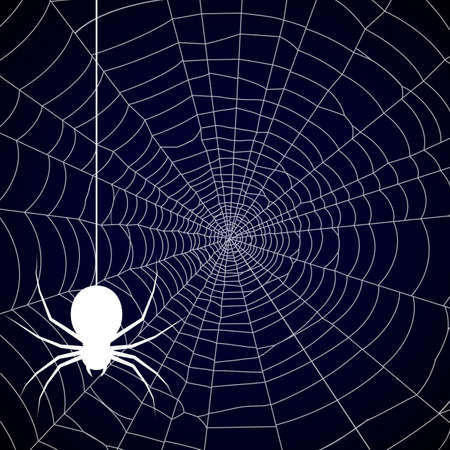 Halloween, spider web background - vector Ilustração Vetorial