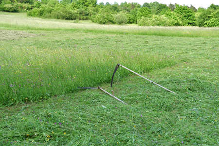 tradition scythe for mowing grass on the green meadow Stock fotó - 120369648
