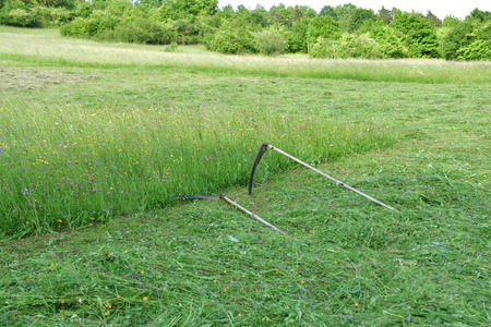 tradition scythe for mowing grass on the green meadow Stock fotó