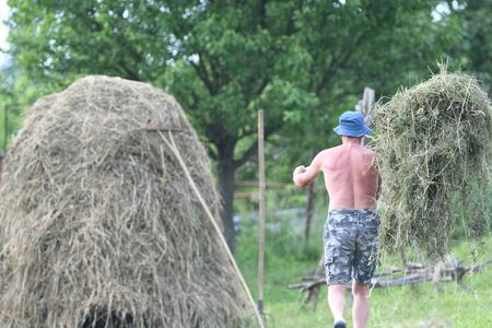 Farmer stacking hay with fork traditional in the village on field