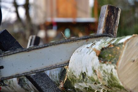 Detail of a wood sawing with chainsaw in the garden village Stock Photo