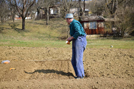 Handmade method of planting plant seeds in a row in the ground in spring 版權商用圖片
