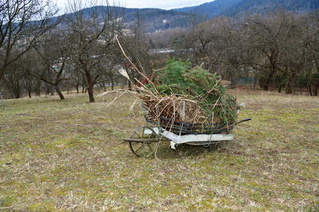 Spring cleaning in the garden at the cottage from branches and dry grass 版權商用圖片 - 167394099