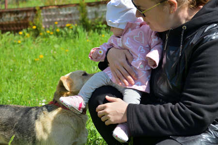 The family love between dog and little infant in background of green grass
