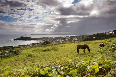 Seaside landscape with green meadow and grazing horse, dramatic sky above a grey sea and a fishing village; St  Ives, Cornwall, England, UK photo