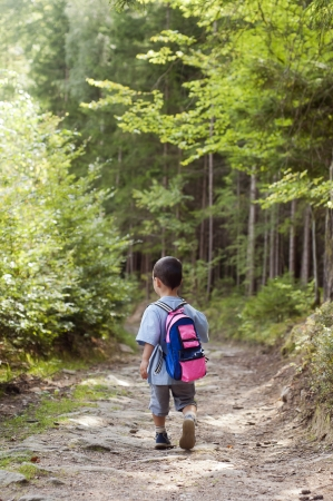 Small child boy walking or hiking on a path through the forest, back view.