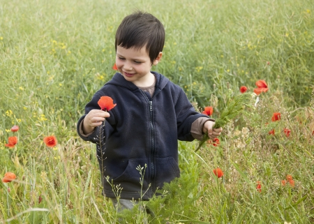 Happy child picking up wild poppy flowers on a wild summer meadow or a field