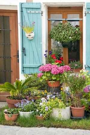 Small street garden in front of a house entrance with pot plants, France  photo