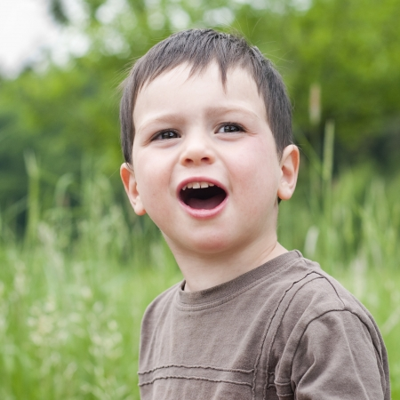 expression facial: Portrait of a happy toddler child on a green summer meadow.