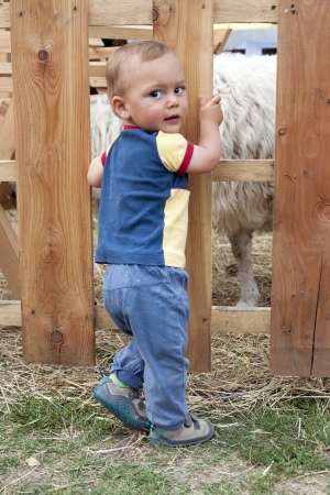 Toddler child standing in front of a wooden fence of sheep enclosure at a farm or in a pet zoo. photo