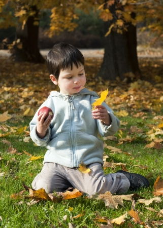oudoors: Child playing in a park with yellow autumn or fall leaves