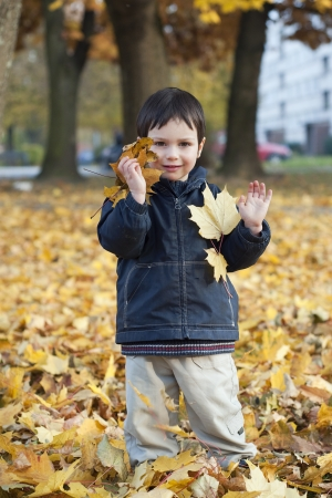 oudoors: Portrait of a child boy playing in a park with yellow autumn or fall leaves   Stock Photo