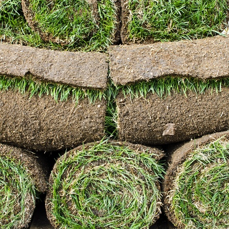 Rolls of fress grass turf.  photo