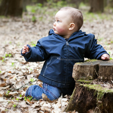 Child toddler or baby in forest, exploring nature, leaning on a tree stump. photo
