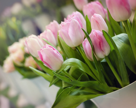 tulips in vase: Pink tulips in a vase at market or in a florist shop.