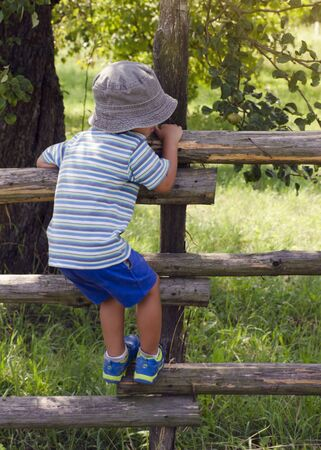 Child boy climbing over wooden fence into a garden or orchard, back view. photo