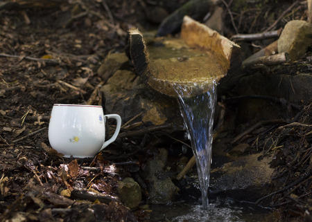 water spring: Water spring in nature with white rustic ceramic cup on ground next to it.