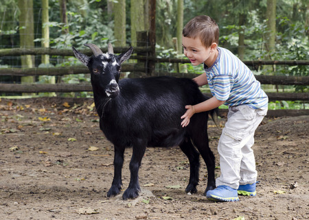 Child boy petting a black goat on a farm.