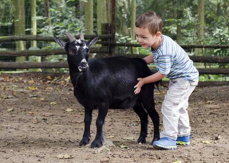 zoologico: Muchacho del niño que acaricia un chivo negro en una granja.