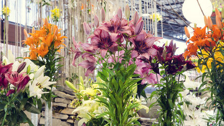 Floral flower lily display arrangement at flower fair or festival