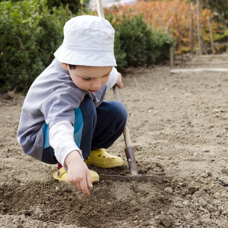 Child raking ground and planting seeds in the garden in spring.