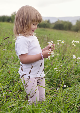 Small girl child looking at daisy flowers on a meadow in nature