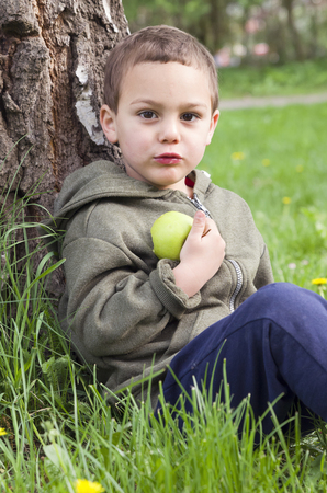 Child boy eating an apple, sitting on grass and leaning agaist a tree in a park in nature.