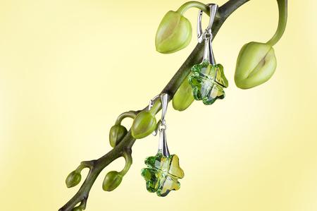 Silver earrings hang on flower. Studio still life image