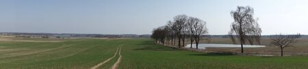 Landscape with a tree-lined road south of Olsztyn, Poland. Panoramic shot. Stock Photo