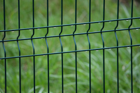 Spring captured. Grid fence with raindrops and blurred green background Zdjęcie Seryjne