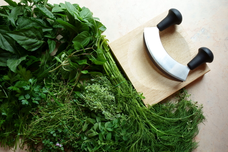 Garden harvest of fresh herbs with chopping utensils