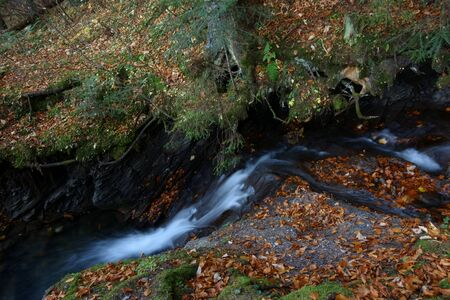 Mountain stream in the autumn scenery Zdjęcie Seryjne