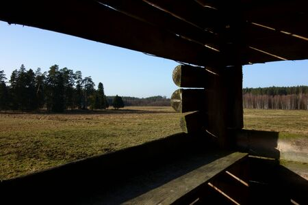 Forest landscape as seen from an elevated hunting blind
