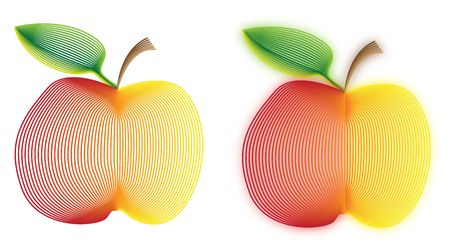 Two drawings of apples drawn with using parallel line technique. photo